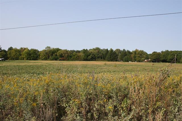 An interesting opportunity for the savvy buyer.  A large 37.8 acre rectangle of flat, tree-lined land, straddling a small farmhouse (not part of this sale).  Crops are leased YTY and go with lease holder.  Approximately 10 acres of woods.  Two streams running through the property.  Municipal water available on property.  This could be a private setting for your dream home, a mini farm, or a small residential development.  Use your imagination.