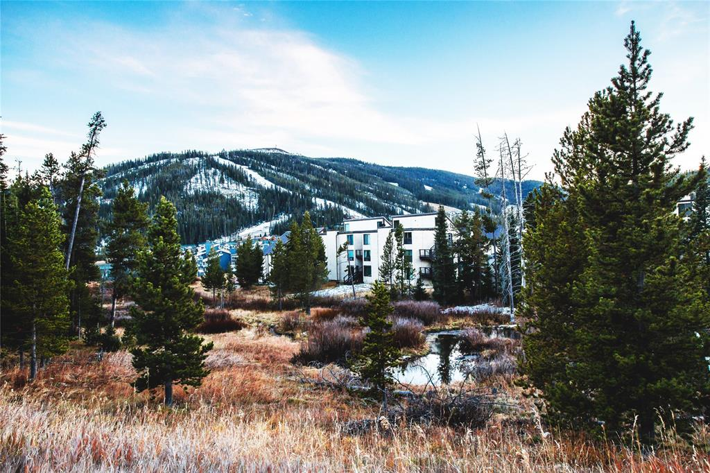 Ground level furnished studio condo located in the heart of Big Sky resort area.  Walking distance to skiing, restaurants and shops. Don't miss this opportunity to get into an investment in Big Sky.  Washer and dryer included in unit.  Contact your agent to view it!