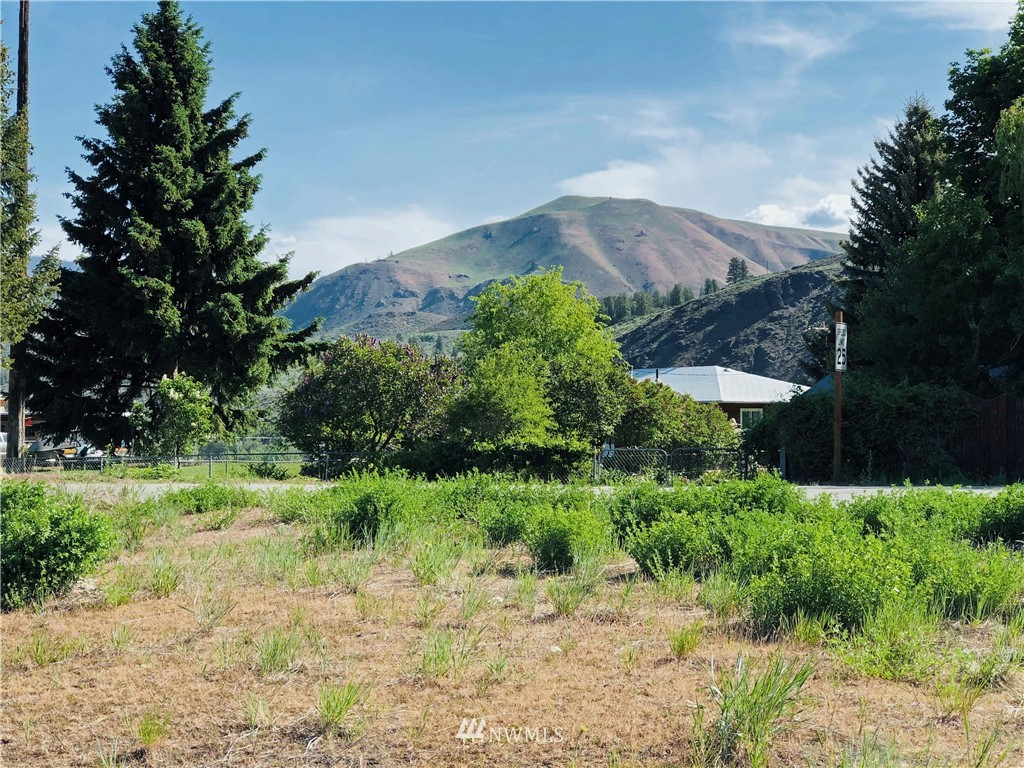 """Located in one of the most desirable neighborhoods in Twisp--the heart of the Methow Valley. Shy 1/4 acre with direct access from May Street. Mountain and territorial views. R-1 town zoning. Twisp water and sewer access in the street. So close to the Twisp Farmer's Market, TwispWorks, galleries, shops, theater and restaurants. All types of outdoor recreation. Twisp is certified as a Washington State """"Creative District.""""  Plan your new home in this  wonderful community with easy access all the amenities of this vibrant mountain valley."""