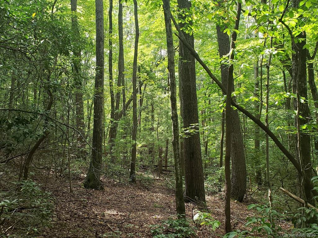 Fantastic piece of wooded paradise for your home!  No restrictions is a plus!  Building site offers a look out over protected land of The Pacolet Area Conservancy.  Moss and mushrooms have nestled into the hardwoods and mountain laurel creating a woodland paradise. Wildlife abounds!  Perimeter of the land is well marked and there is a visible path for you to follow.  Go see it today and start moving your dreams to a reality! Please make an appointment with showing time to ensure dogs are put up for the visit.
