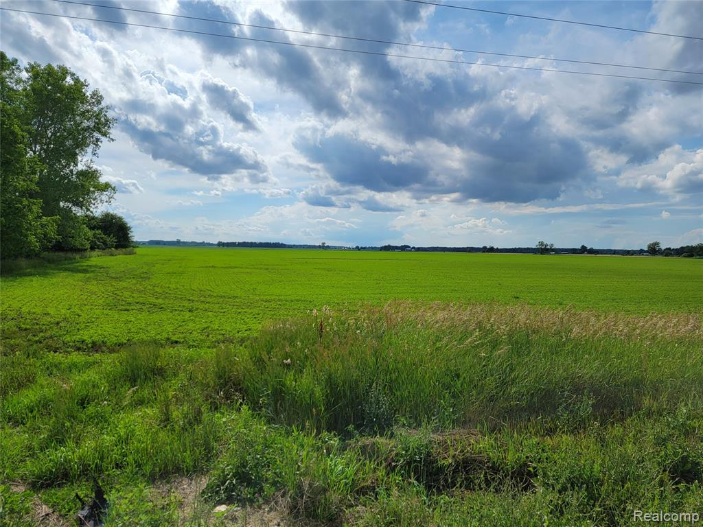 This opportunity doesn't happen very often. 55 acres of farm land on a paved road. There is an old house on the property with a well and septic. Seller has requested that no one is to enter the house as it is unsafe.  Old school house is not part of this property. Call if you plan on walking the property. Don't disturb the beehives on the property.