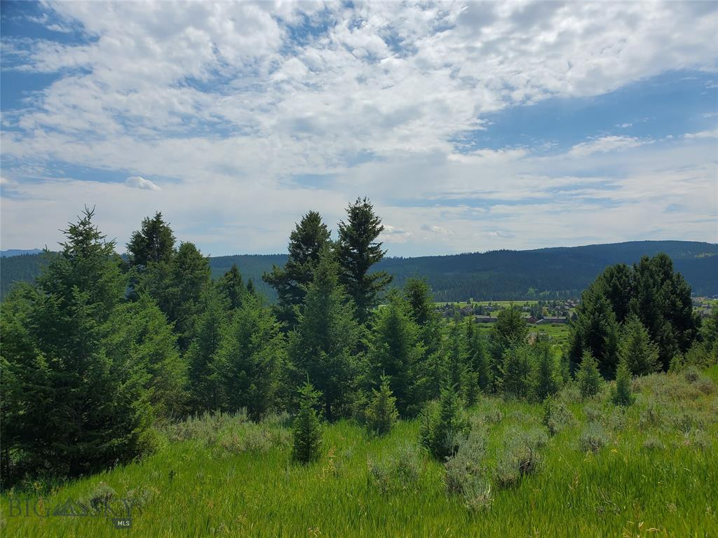Great Big Sky view lot just under 1 acre, Southern Exposure, Close to amenities, Dead End Street, Views of Lone Mountain, Get it while it lasts!! Proper Photo's in process. Images are both from on property and in other spots in Big Sky.