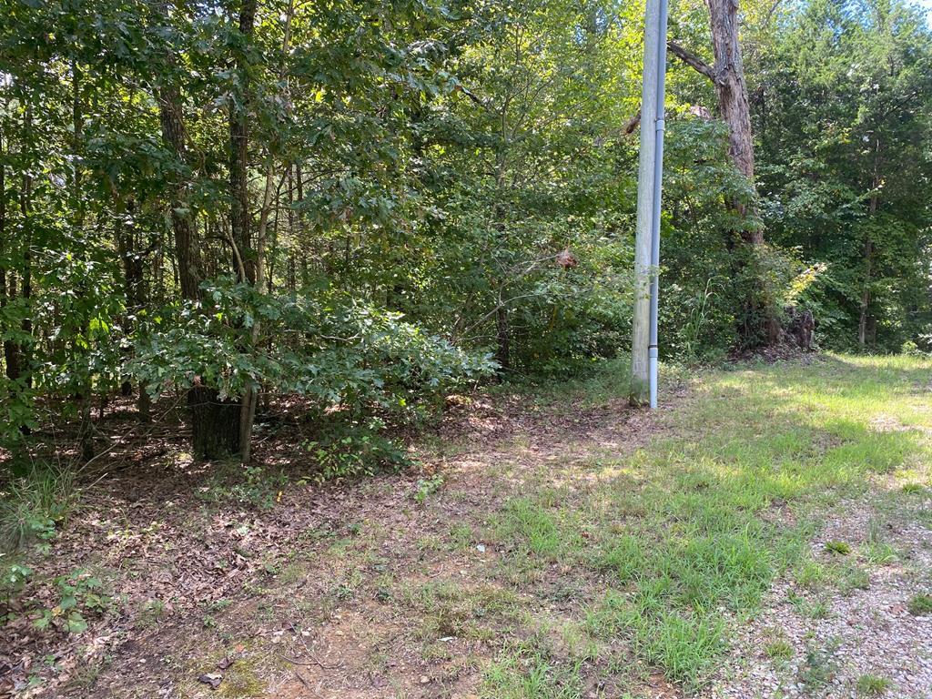 0 Hwy 641 N, Camden, TN 38320