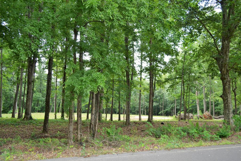 Grab your house plans and get started! This beautiful lot which was part of The Old George Temple Farm consisting of approx 2.56ac is ready to build on. Owners have done most of the leg work to prep this lot for building. Partially cleared, 4br septic has been applied for, house seat cleared, driveway cut in/graveled and a Permanent Joint Access Easement has been granted for the purpose of providing ingress/egress to Temple Rd. Property touches both Temple Rd & Parton Circle. Deeded restrictions minimal (no mobile homes). Property taxes TBD