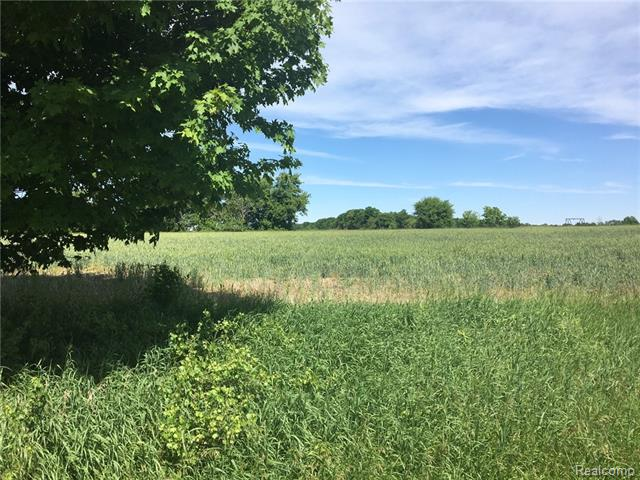 Beautiful building parcel in an area of very nice homes. Minutes from M-53. Convenient access to dining and shopping. Imlay City schools. Land contract terms are available. Bring your building dreams and plans! Or will build to suit. Parcel ID number assigned July 2018 and reflects split. Legal description and taxes shown in listing are for original Parent Parcel.
