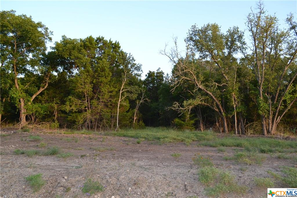 1.007 ACRE LOT IN LAMPASAS RIVER PLACE PHASE TWO ~ Come build your dream home here in sought-after River Place in Kempner. River Place is a subdivision where neighbors walk, jog, and ride bicycles. Lots are mostly flat and some are gently sloping. River Place has many majestic old oak trees. Some lots have river frontage on the Lampasas River. Come home to the country, yet be a short drive to the amenities and conveniences of Fort Hood, Lampasas, Kempner, Copperas Cove, Killeen, Harker Heights, and the local areas. Austin is just over an hour's drive away. The County Roads in River Place are paved. An ornate entrance is being built for the entrance off FM 2313. Community mailboxes will be installed. You can choose any builder and build when you are ready, remembering that deed restrictions are in place. There is no timeline to build. Utilities for River Place are provided by Hamilton County Electric Coop, Kempner Water Supply, and on-site septic. The water lines and power lines are in. Come and visit Lampasas River Place today!