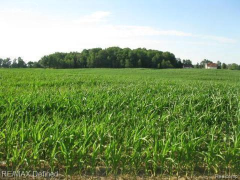 Just over 45 Acres of beautiful rolling land - currently planted with corn that will be harvested soon.  This is a prime spot for development or splits !  150ft of frontage on Oak and 1556ft of frontage on Lippincott.