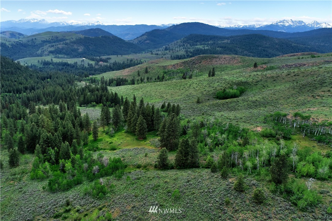 Inspiring 25 acres with a diverse & private setting that includes shimmering aspen groves, majestic old growth pine, sweeping mountain views & loads of wildlife. National Forest borders on 3 sides. Multiple level building sites to choose from & a driveway already in place. Includes a well. Ski or mountain bike out your door to connect with the Rendezvous ski trail system & the Buck Mtn mountain bike trail. Located directly above the Cub Creek Methow Trails parking lot! Truly a world class property for someone seeking recreational opportunity and solace.