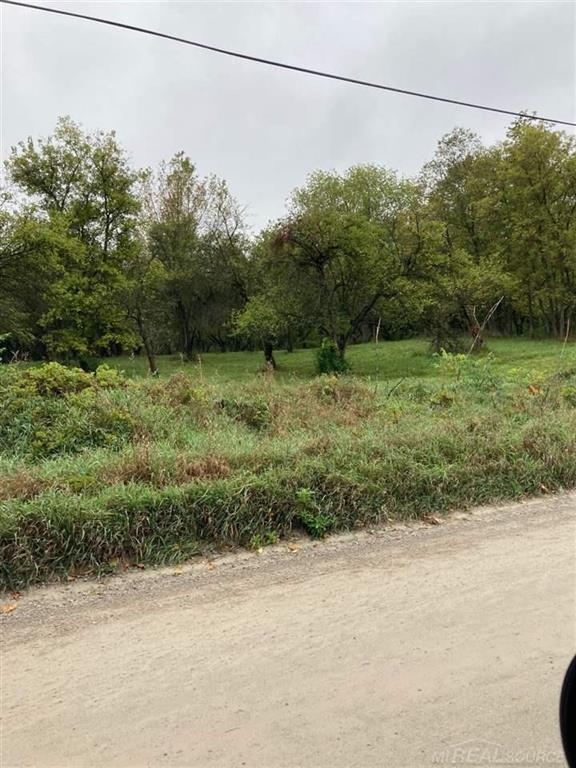 Rolling Apple tree covered (front 6.5 acres) ideal for walkout rear 3.58 acres farmed corn field Previously perced