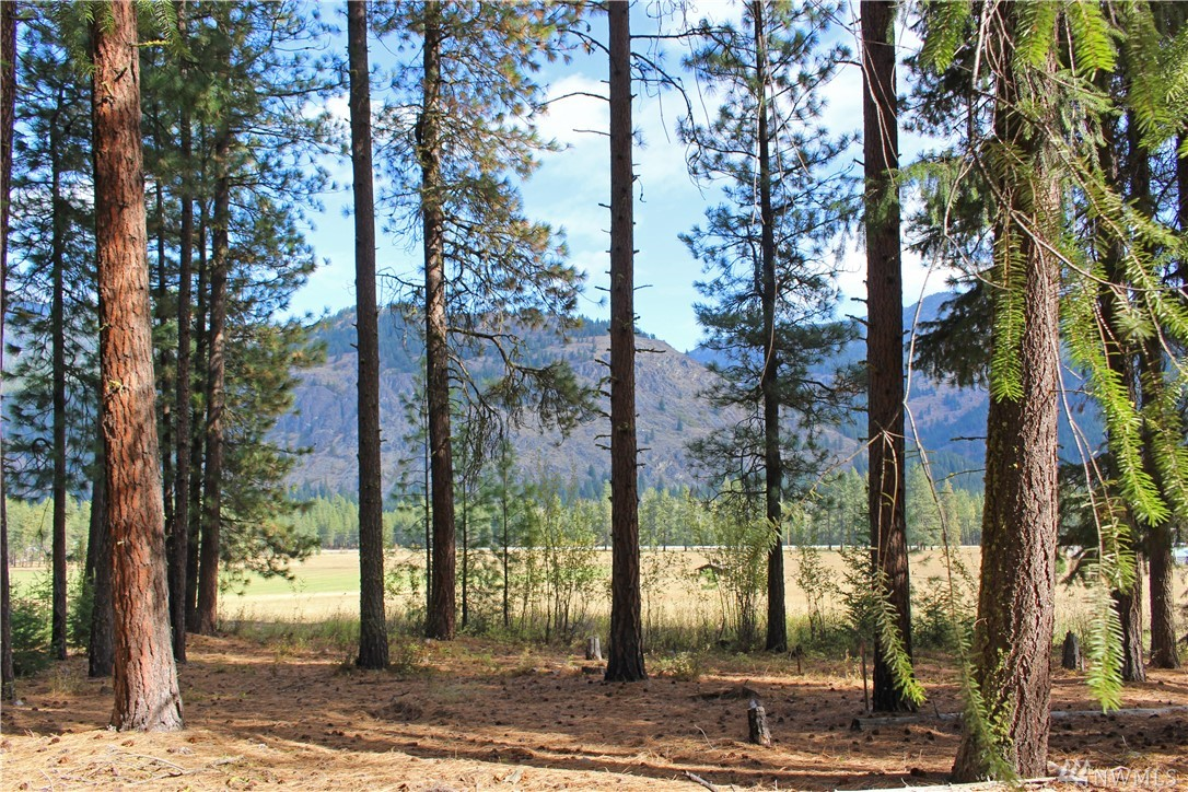 What! Explore unlimited Recreation in the heart of Mazama with ski, bike & hiking trails close by, your back yard is State Land, along w/15 acres of irrigated green common area. What could be better? Zoned Nightly Rental AND Lower your building cost w/shared well, septic drain-field area, power & phone in the road.  With 2 lots you can build your dream cabin, full time home or duplex for additional rental income. One mile to the Mazama Store for a latte & Baguette doesn't get any sweeter!