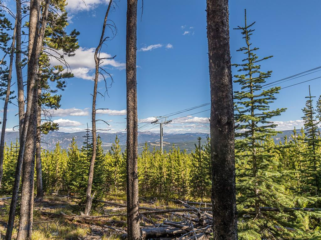Located in the coveted Andesite Ridge Neighborhood with easy access to 2 ski areas. This beautiful treed 2.84 acre lot is sunny and gently sloping. Enjoy Southern exposure and views to Eglise, the golf course and the Gallatin Range. The building site is suitable for any type of architecture or construction and can include a guest home. This is the only available on Andesite Ridge at this time. On community water and sewer.