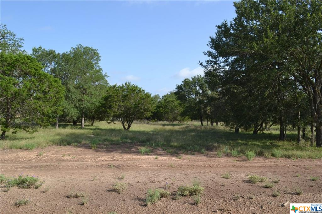 1.305 ACRE LOT IN LAMPASAS RIVER PLACE PHASE TWO ~ Come build your dream home here in sought-after River Place in Kempner. River Place is a subdivision where neighbors walk, jog, and ride bicycles. Lots are mostly flat and some are gently sloping. River Place has many majestic old oak trees. Some lots have river frontage on the Lampasas River. Come home to the country, yet be a short drive to the amenities and conveniences of Fort Hood, Lampasas, Kempner, Copperas Cove, Killeen, Harker Heights, and the local areas. Austin is just over an hour's drive away. The County Roads in River Place are paved. An ornate entrance is being built for the entrance off FM 2313. Community mailboxes will be installed. You can choose any builder and build when you are ready, remembering that deed restrictions are in place. There is no timeline to build. Utilities for River Place are provided by Hamilton County Electric Coop, Kempner Water Supply, and on-site septic. The water lines and power lines are in. Come and visit Lampasas River Place today!