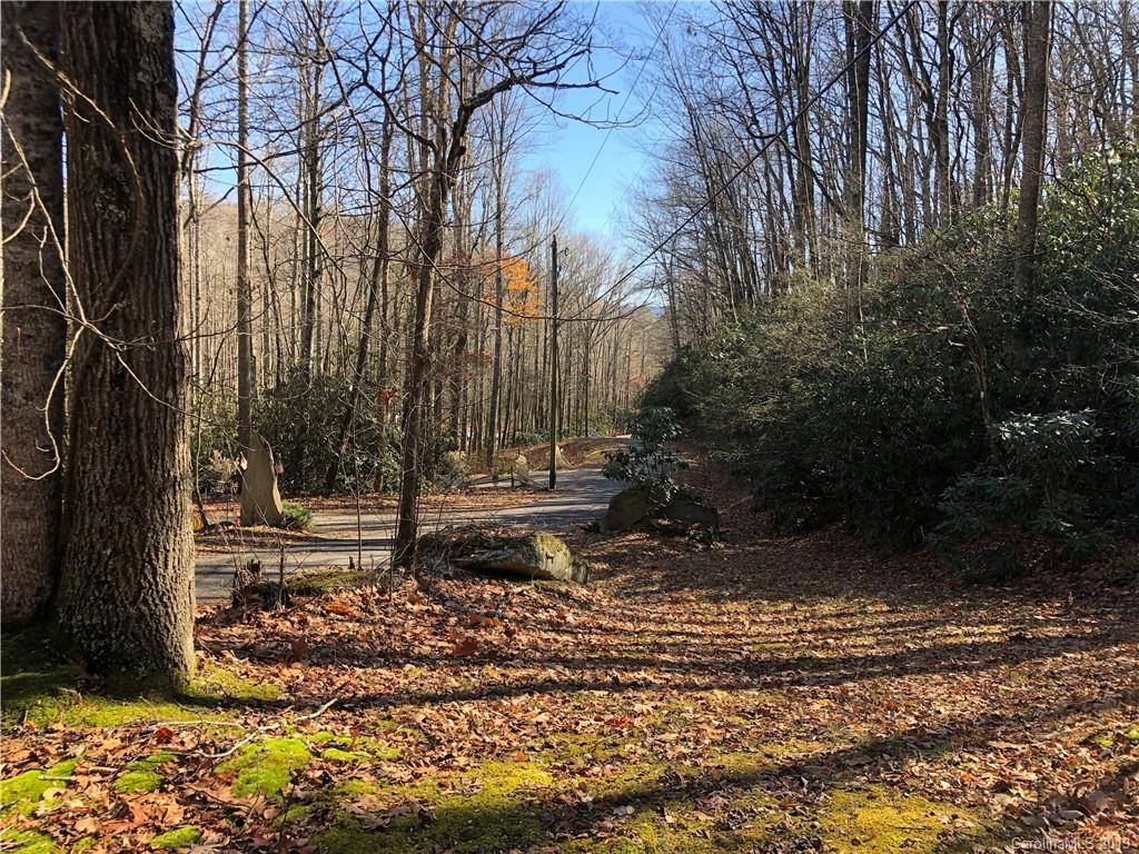 Beautiful home site with privacy and country feel, yet still close to downtown Hendersonville.  The road wraps around the lot giving multiple potential access points.  Build high on the gentle grade for potential winter views. Privacy, wildlife, and paved roads are part of the draw of the Lace Falls community. You don't want to miss this great deal in Lace Falls.