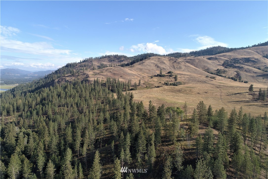 On a clear day you can see forever from this 3,915 acre ranch nestled between the Kettle River and Lake Roosevelt. The Ranch boasts 32 parcels, with approximately 160 ac in hay leased to a local farmer, and income from a cell tower lease. Trophy deer, elk, & most game birds, & watch out for bears. 4 homesteads from the 1800's, affixer upper farmhouse, and old foreman's house (not livable), barn, springs, pond. Property fronts on 3 county roads. Historical tales report 2 mines, (we found them)