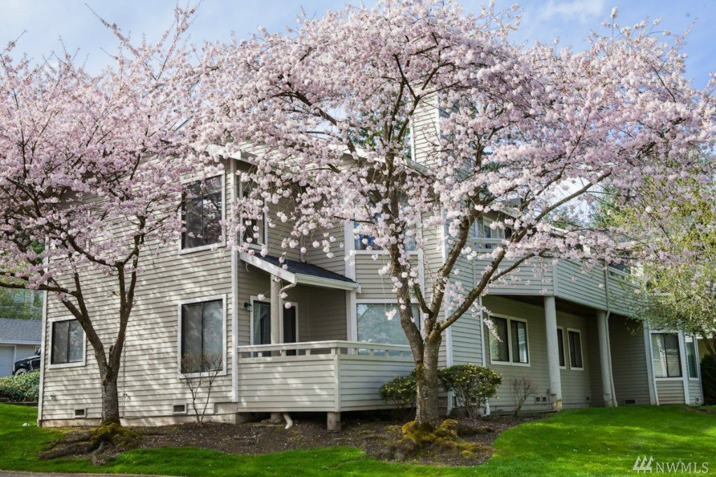 Enjoy private Cherry Blossom tree views from this updated top floor condo that's minutes from Microsoft. Relax on expansive balcony w/ plenty of privacy & the serenity of an end unit w/ inviting hardwood flr entry, large vaulted ceiling living room w/ wood burning fireplace, abundance of light /windows, 2 spacious bedrooms, 1.75 bathrooms & in-unit laundry room. Amenities include club house, exercise room, hot tub & pool, Lake Washington Schools, close to 520, downtown & shopping. No rental cap.
