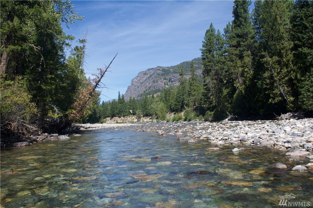 MAZAMA RIVERFRONT! This rare land is walking distance to the Mazama Store!  The Methow Trails system is yards away for year round use to enjoy skiing, biking & running.  Relax  overlooking the beautiful Methow River w/ iconic Goat Peak in the distance. No restrictive CCR's so camp now & build your dream home later on this exceptional piece of paradise with 100 feet of low bank waterfront and excellent well.    Easy level access on private road from Mazama Junction and North Cascades Hwy.