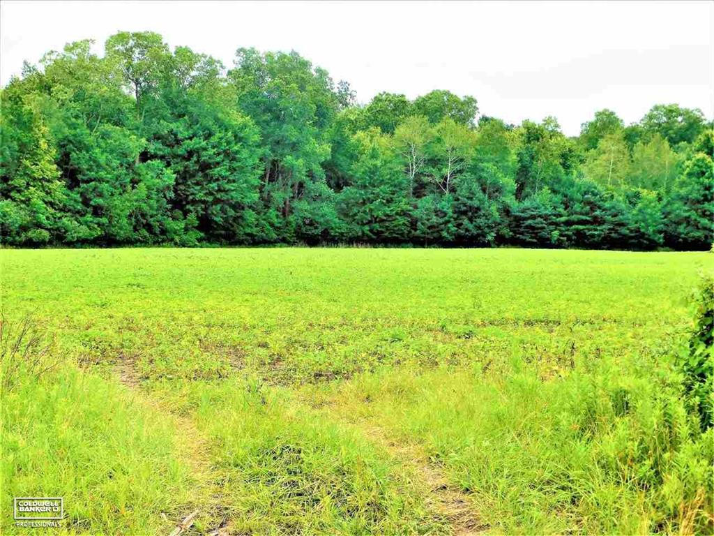 Beautiful 20.21 acre parcel.  Partially wooded for the perfect dream home that you are looking to build.