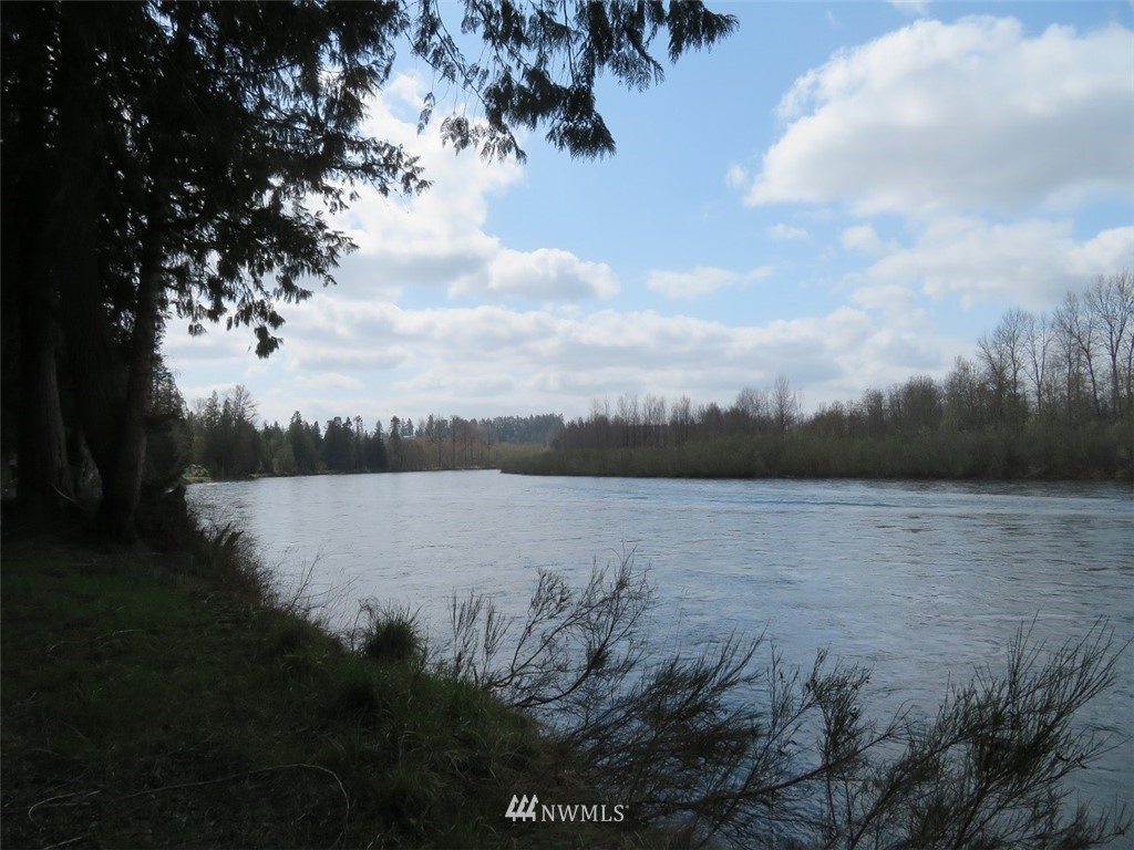 """Your chance to """"Live the Riverfront Dream"""" on this highly desirable, hard to find acreage on the Cowlitz River. This is an incredible flat & dry property situated out of the FEMA 100-Year Flood zone but still has good access to the river which makes property an ideal future riverfront residence. This exquisite Cowlitz River property has the perfect blend of woods & meadows & offers some the best sport fishing in Washington State. Even more astounding is this riverfront gem is just 90 minutes from Portland and 2 hours from Seattle. Power, Phone & High Speed Fiber Optic Internet is available, well & septic should be no problem either. There is no better riverfront property currently for sale along the I-5 corridor between Portland & Seattle"""