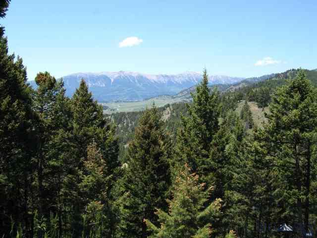 Trees, trees, and more trees are yours on this mostly wooded end of the road 20 acre parcel. Very private and secluded tract that captures views of snow covered peaks, southern exposure, and fresh clean mountain air from great build sites. An ideal site for off grid private living as power is available but distant.