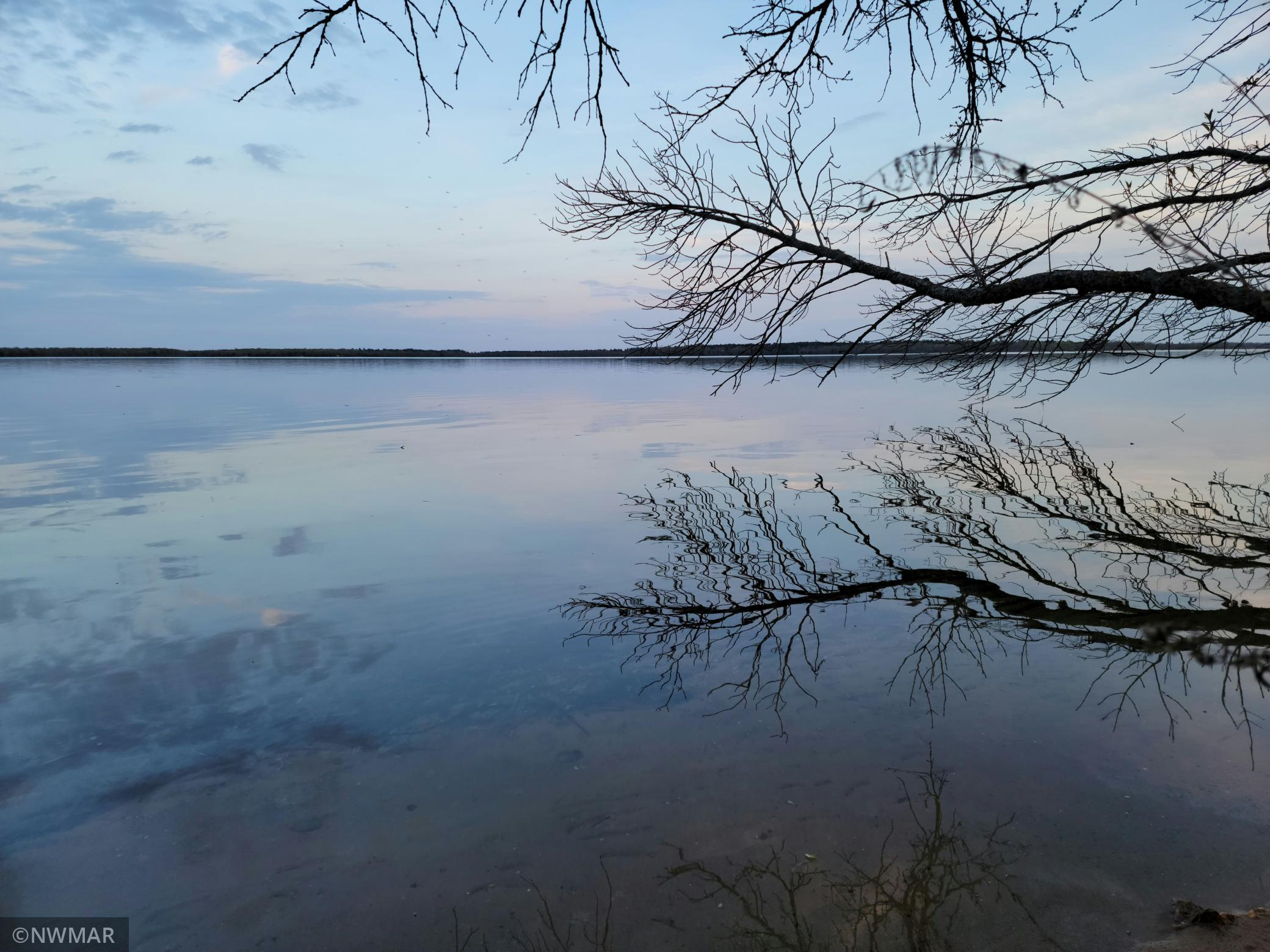Here is your chance to enjoy Cass Lake and all it has to offer! These 2 parcels have been married forever and offer 5 acres with 345' +/- of level, sandy, south facing lakeshore.  The view is spectacular. The lake bottom gently drops off providing swimming area and yet deep enough for a boat to pull in.  Well and electric are already on site but not currently in use. Owning property on Cass Lake provides more than ample recreation as it is one in a chain of 9 lakes that includes the Mississippi River.  If you need more leg room a wooded 9 ac parcel across the road is available from the same party;  MLS #5722991.  Cass Lake is a big lake that offers recreation and great fishing all year round.