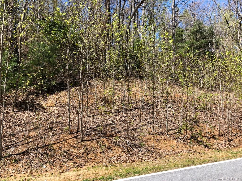 Great opportunity to build your dream home on this 1.65 acre lot located in Kenmure- a gated golf course community in desirable Flat Rock. Easy build gentle sloping lot with mature hardwoods. Winter views with year round view potential. Expired 3 bedroom septic on file. City water, underground utilities and natural gas available. Club amenities include golf, tennis, indoor and outdoor pools, fitness center and clubhouse. Membership optional. Great community! Convenient location!