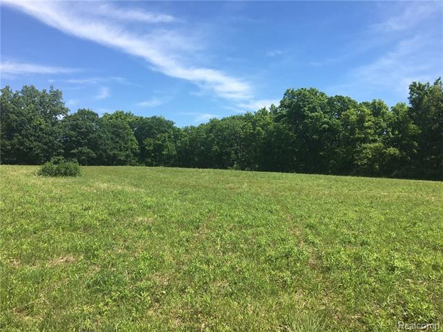 Premier development in Almont - estate building sites. Private, wooded parcel just over 15.5 acres. Private road entrance off paved road with natural gas. Restrictions on file to protect your investment. Bring your home plans!