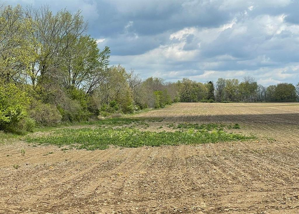 This 55 acre site that is just minutes from downtown Tecumseh offers endless opportunities! Use it as an equestrian farm, a hobby farm, a dream-home site...the list goes on. The southern portion of this land is filled with mature trees while the northern portion is wide open farmland. Bring your builder as walkout sites are available. Township taxes yet just a short bike ride to downtown Tecumseh. Paved roads.