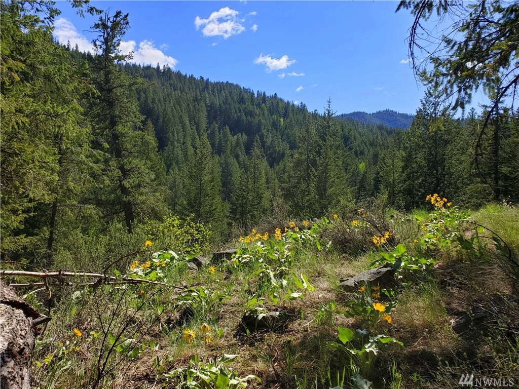 WOLF CREEK VIEWS and creek frontage are yours with this shy acre home site nestled into a 27+ acre private community.  Only 4 home sites exist -forever- in the 27 acres.  Power and water on property.  Secluded building site with intimate SW facing mountain views. Constant ambient Wolf Creek rumbling for the water lover.  Almost 1/2 mile of frontage!  Quiet privacy in a naturally rich living ecosystem. County permitted group well in place.