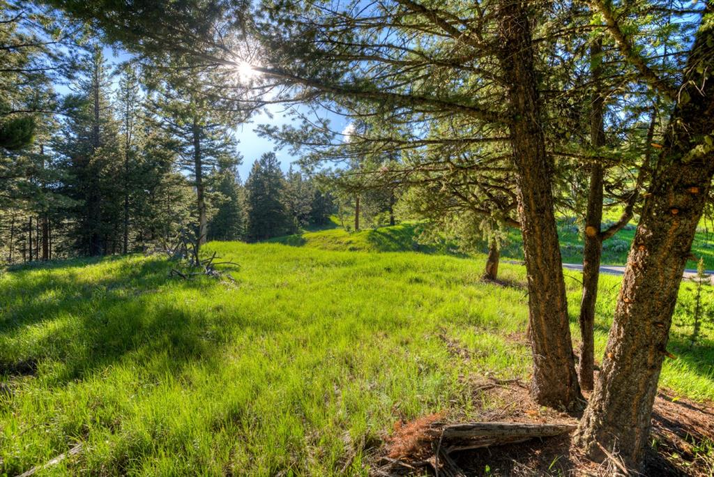 In the heart of the Ranches at Spanish Peaks Mountain Club, this 3.5 acre parcel is possibly one of the best. Taking advantage of eastern & southern views, the flat homesite makes for an ideal building envelope with mature trees that provide a natural canopy. Surrounded by open space on three sides creates an extremely private setting, while a short 2 mile drive to Town Center, puts you in the heart of Big Sky. Enjoy convenient access to nearby trails & Spanish Peaks Mountain Club amenities.