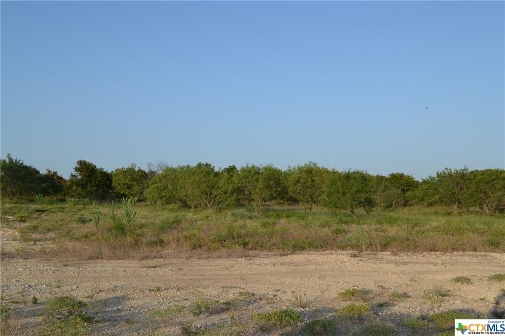 1.099 ACRE LOT IN LAMPASAS RIVER PLACE PHASE TWO ~ Come build your dream home here in sought-after River Place in Kempner. River Place is a subdivision where neighbors walk, jog, and ride bicycles. Lots are mostly flat and some are gently sloping. River Place has many majestic old oak trees. Some lots have river frontage on the Lampasas River. Come home to the country, yet be a short drive to the amenities and conveniences of Fort Hood, Lampasas, Kempner, Copperas Cove, Killeen, Harker Heights, and the local areas. Austin is just over an hour's drive away. The County Roads in River Place are paved. An ornate entrance is being built for the entrance off FM 2313. Community mailboxes will be installed. You can choose any builder and build when you are ready, remembering that deed restrictions are in place. There is no timeline to build. Utilities for River Place are provided by Hamilton County Electric Coop, Kempner Water Supply, and on-site septic. The water lines and power lines are in. Come and visit Lampasas River Place today!