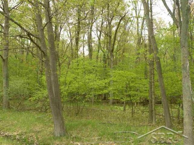 Great hunting or building site. Cleared area near road would be a great site to build your dream home. Property is surveyed. Paved road. Located between Hemlock, Saint Charles and Merrill.