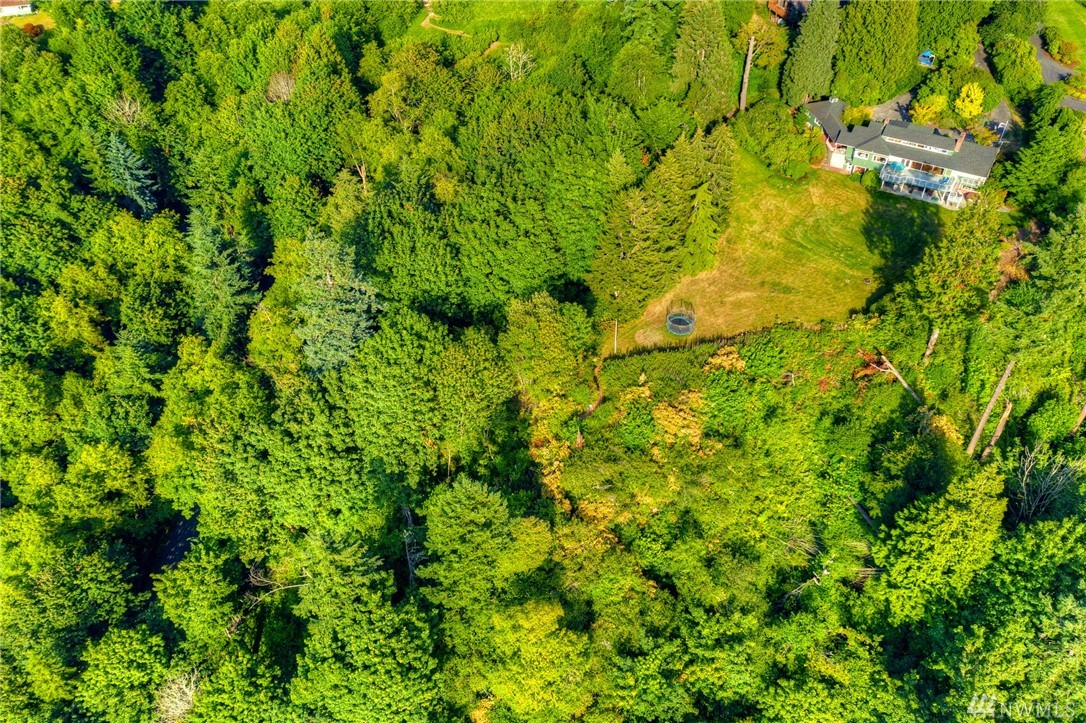Location, Location! Large custom built home on rare 3.2 acres. Spectacular Sweeping Puget Sound & Olympic mountain views. Private & peaceful at the end of a quiet street. One of the most spectacular views south of Seattle w/west Views from almost every room. Features include a main floor master suite, old-growth flooring & mahogany wainscot through living, dining & bdrms, large rec room, upper floor bonus rm, lot 'A' private beach rights, park-like setting, quick access to light rail & much more