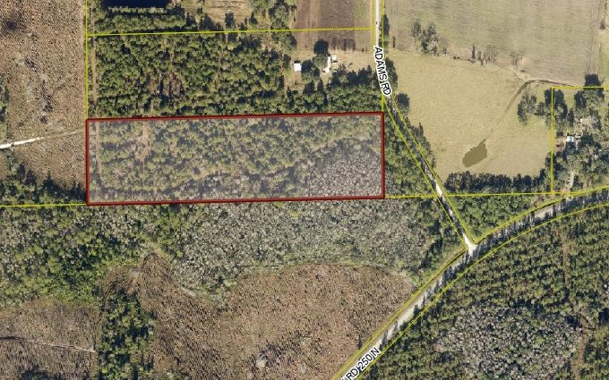 Country Living with Lots of Elbow Room. Nice Property with Lots of Privacy. 50 Feet off Adams Rd. Wildlife Abundant. Come and Enjoy Outdoors and Fresh Air.