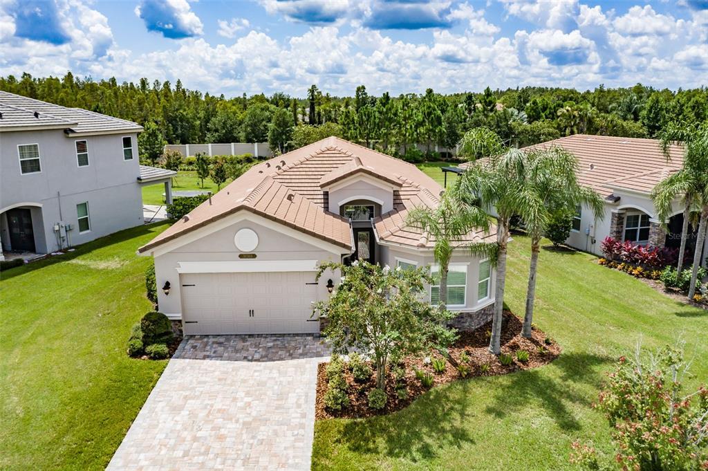 30368 Tristania Court, Wesley Chapel, FL 33543