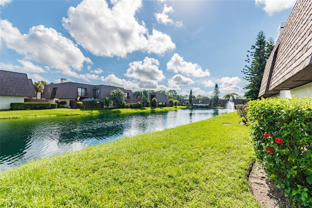 Get the best of location and lifestyle!  Here is an exciting new listing in QUAIL RUN condominiums.  This home is nestled in a quiet section of the community and offers 3 BEDROOMS, 2 1/2 BATHROOMS and serene WATER VIEWS with mature landscaping.  Imagine a spacious 400s.f. PATIO with PRIVACY FENCING, creating the perfect atmosphere for entertaining friends or connecting with family.  This gorgeous 2-story, corner unit has an open floor plan with an inviting Family Room as your enter and a Dining Room directly adjacent to the NEWLY UPDATED KITCHEN.  Enjoy the gleaming NEW QUARTZ COUNTERTOPS, UPDATED STAINLESS STEEL appliances and DARK WOOD finish cabinets.  To compliment the overall modern look, you'll find NEW INTERIOR PAINT,  NEW contemporary CHANDELIER and LIGHT FIXTURES and UPDATED BATHROOMS on every floor.  The large Master Bedroom provides an intimate balcony, overlooking your private patio and views of the serene fountain in the Quail Run pond.  It also includes an en suite UPDATED bathroom with dual sinks, split vanities and a rain head walk-in shower.  Both secondary bedrooms have easy access to the UPDATED HALL Bath.  While you are outside relaxing with your favorite cocktail (or cool beverage) you may forget you're just a few blocks from MAJOR SHOPPING PLAZAS, POPULAR and LOCAL RETAILERS, and TREND-SETTING RESTAURANTS.  Don't miss out on this peaceful setting in the middle of everything CARROLLWOOD has to offer.  Come see it right away because this home is priced to sell.