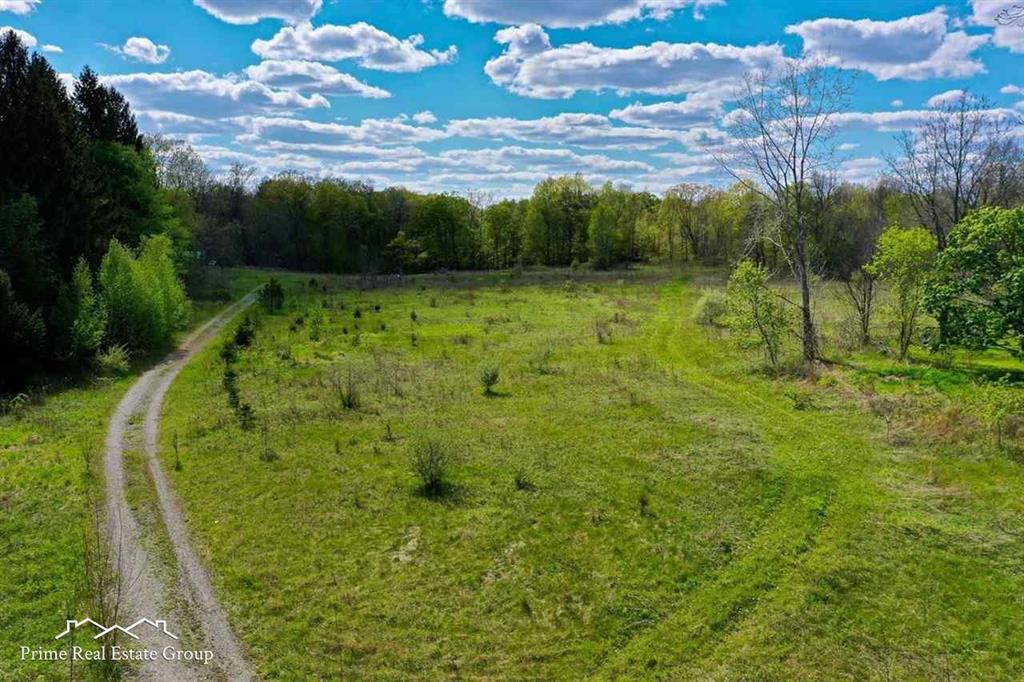 Absolutely gorgeous 13.83 acre parcel ready for you to build your dream home! Award winning Goodrich schools! Come see this beautiful piece of wooded heaven! Survey on file and aerial showing property lines is available as well. Property is staked.