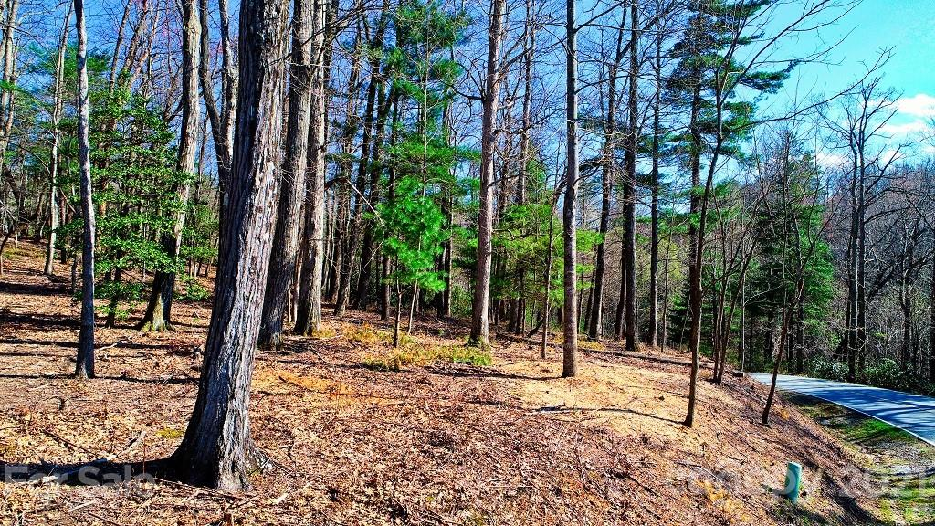 Builder friendly estate lot in Kenmure. Gentle slope, hardwood trees, and good views. Agent on cite and contractors available to walk the lot and discuss your building plans. Build your dream home on this fantastic lot and enjoy all that the Kenmure community offers.