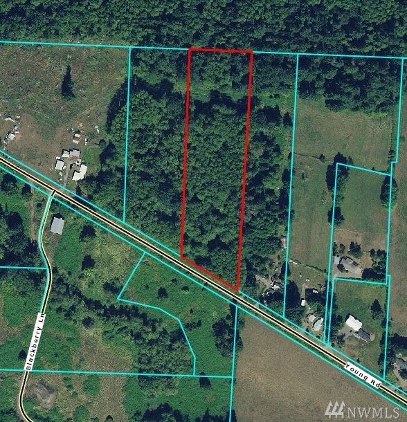 6+ acres located a short distance from Mossyrock just waiting for you to create your country dream. Bring your ideas, clear a spot & get building the home you've always dreamed of.  Lightly treed, mostly level with NO hydric soils or wetlands (according to LC GIS maps)making development much easier.  Close to Riffe & Mayfield lakes, an ideal place for outdoor recreation. Backs up to  Cowlitz Wildlife area. Additional 5+ acres available.