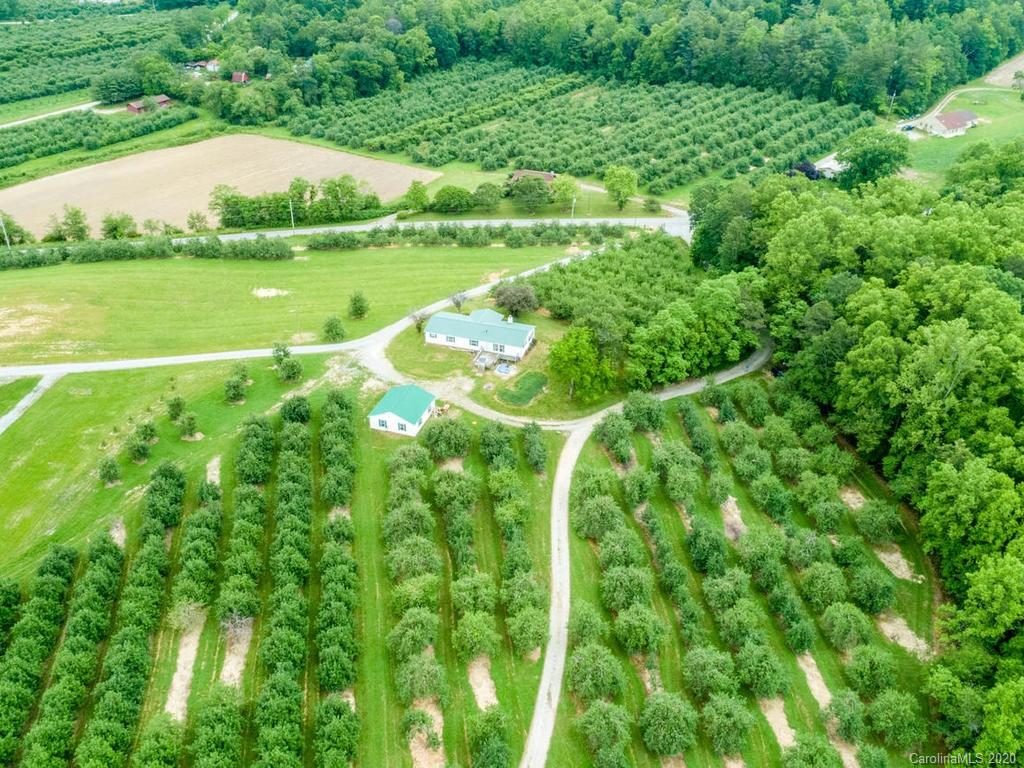 HIGHEST AND BEST OFFERS must be submitted by Friday, October 30th at 5:00 PM.  Dreamed of owning an apple orchard?  Now is the time! 16.26 acre producing apple orchard with an almost 1900 sq ft home, an oversized 2 car garage - 859 sq ft and a picturesque pond!  Orchard is leased till the end of the year - you may renegotiate lease or run it yourself.  One of the prettiest locations you will find in Hendersonville.  You will feel like you are in the heart of the country with gorgeous mountain views  and a small pond tucked in the orchard yet less than 15 minutes to Hendersonville.  Rocking chair front porch with a lovely breeze and views of the mountains.  Home needs love and attention inside - cosmetic work - paint, flooring, appliances.