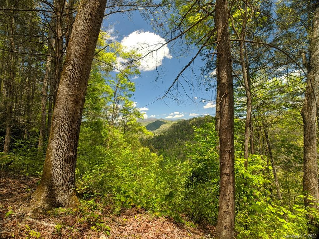 Lot 90 Bear River Lodge Trail 90, Marshall, NC 28753