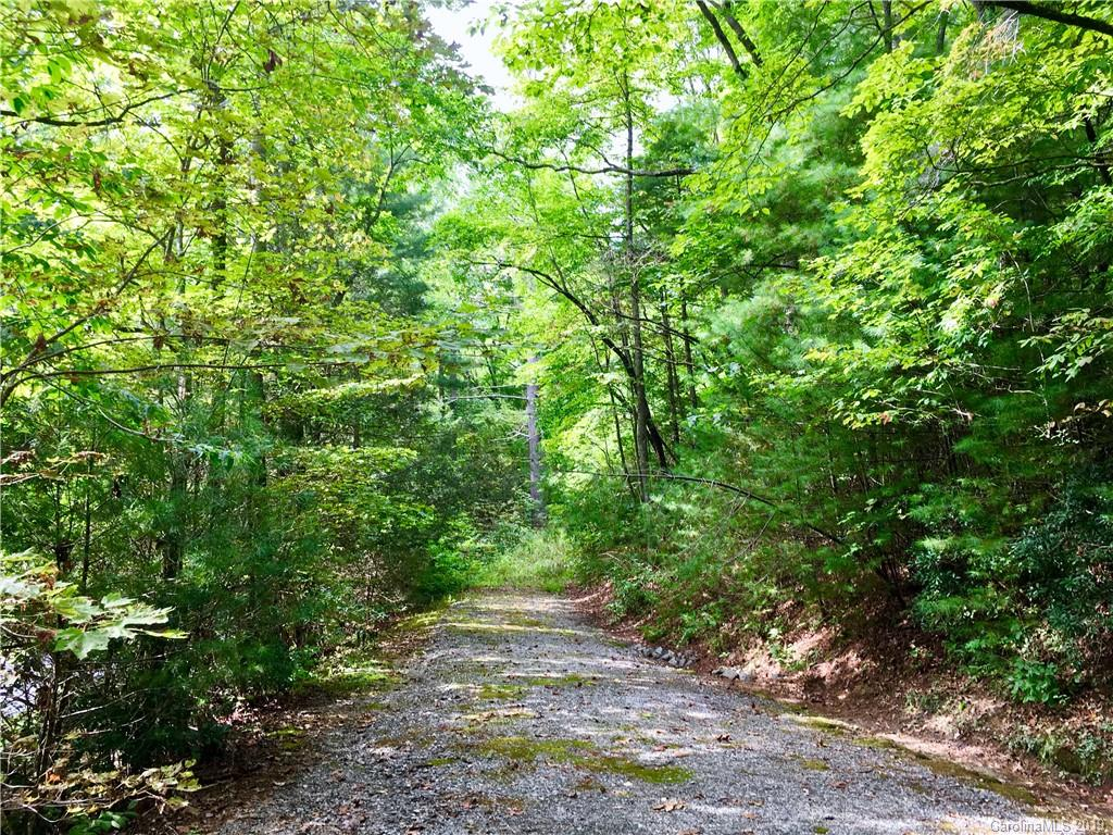 Just under an acre, this beautiful wooded lot in Summit Landing (a gated community on Green River with sounds & canals adjoining the 300+ acre Lake Summit) offers the perfect location to build your dream home, second home, or VRBO. This small, private, & rustic community is located in the heart of the Tuxedo community.  Bordered by the green horse pastures of Camp Greystone, Camp Mondamin, & Camp Green Cove in the beautiful Green River Valley. Outdoor Enthusiasts can enjoy kayaking, canoeing, paddle boarding, hiking, grilling out, & swimming at the shared community boathouse & common area, complete with kitchenette, private dock, boat ramp, trails & fields. There is also plenty of decking at the private common to enjoy both the mountain & water views. Convenient to both I-25 & I-26, Summit Landing is just down the road from popular Flat Rock,  9.5 miles to Hendersonville, 16 miles to Asheville Airport, & 29 miles to Greenville SC.  Adjacent lot also available for purchase MLS#3435229