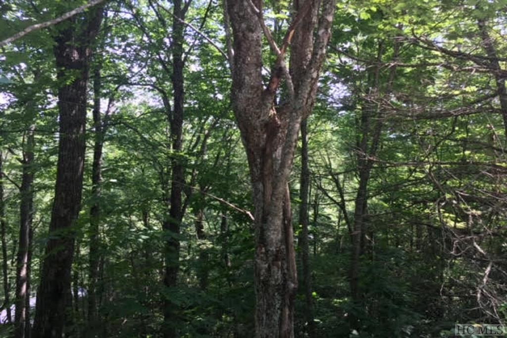 TBD Moorewood Circle, Highlands, NC 28741