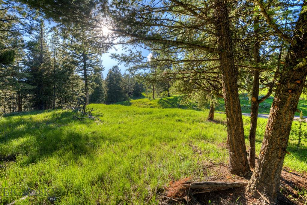 This 3.5 acre Ranch lot is one of the best! Eastern and southern views, abundance of mature trees and open space on two sides of this parcel make it unique and private. The flat homesite is ideal for your mountain retreat yet only a 2 minute drive to the Town Center puts you in the heart of Big Sky. Enjoy convenient access to nearby trails & Spanish Peaks Mountain Club amenities.