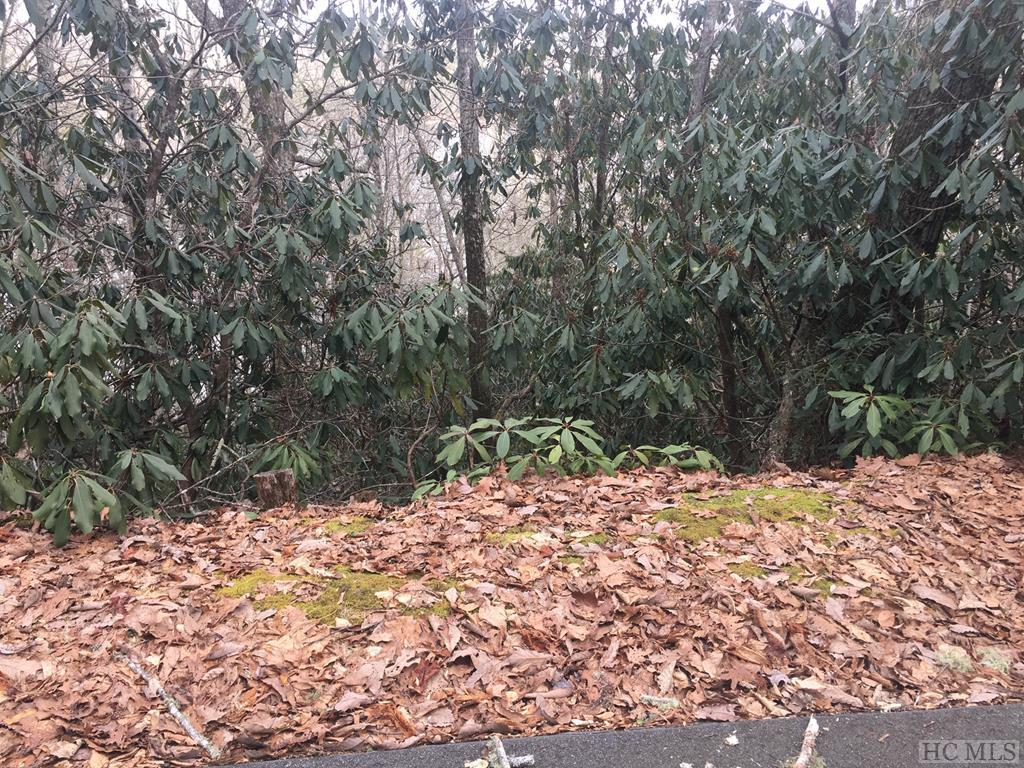 Lot 1 Via Del Lago, Cullowhee, NC 28723