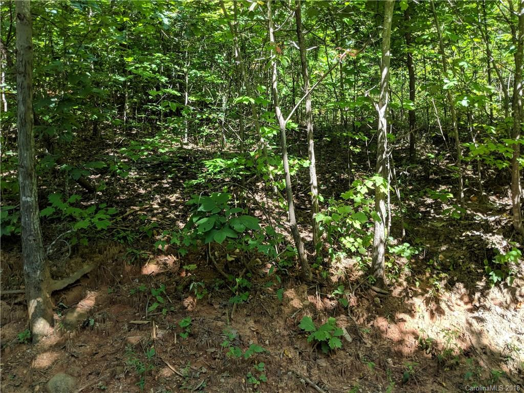 Private wooded corner lot in Stoneridge Estates. Winter views, gently sloping, underground utilities. Great lot to build your dream home!  Easy access to Asheville, Old Fort, Bat Cave, Lake Lure and Hendersonville.
