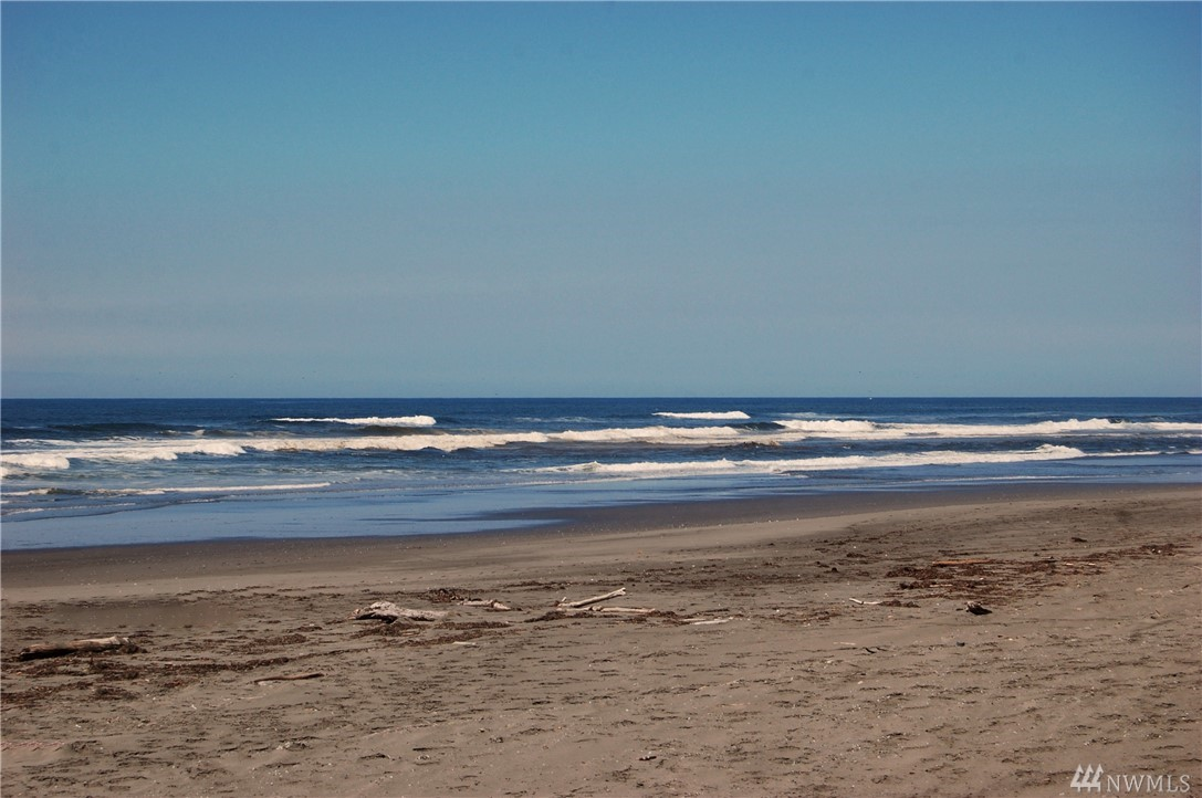 Awesome oceanfront lot property in a great location in Ocean Shores. Enjoy surfing, fishing, clamming, and kite flying at the beach. Camp up to 90 days a year or build your dream home. Walk right out your back door right to the beach. Beautiful setting to make your own. OUT of Community Club.  LID Paid in Full.