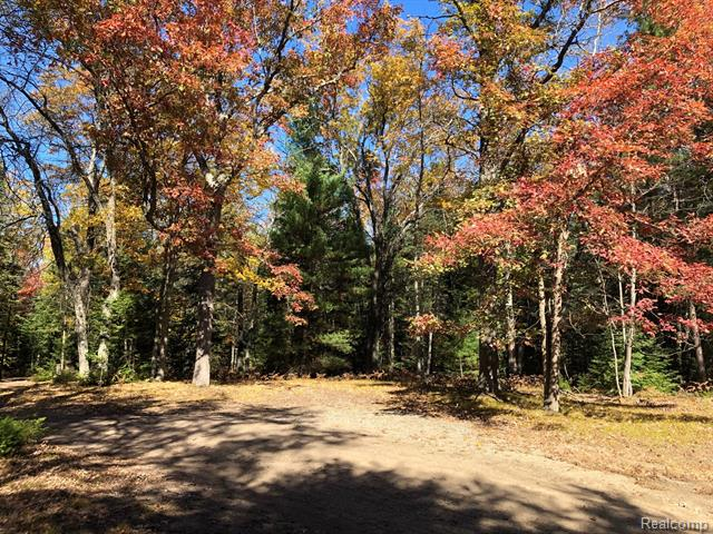 Beautiful 8.4 parcel of land perfect for building your home away from home! The property has an artesian Well and is near Lake Saint Helen.