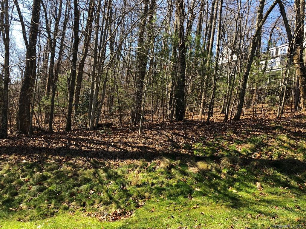 This lot is priced at a FRACTION of the tax value! Lovely, fairly level lot would provide an easy build and gentle driveway. Great location close to the clubhouse and amenities. This won't last long at this price! Subject to POA fees of $2838/year. Champion Hills is just 8 minutes from downtown Hendersonville and all it has to offer, great restaurants, galleries, grocery stores and good medical care. Come see what makes us special!