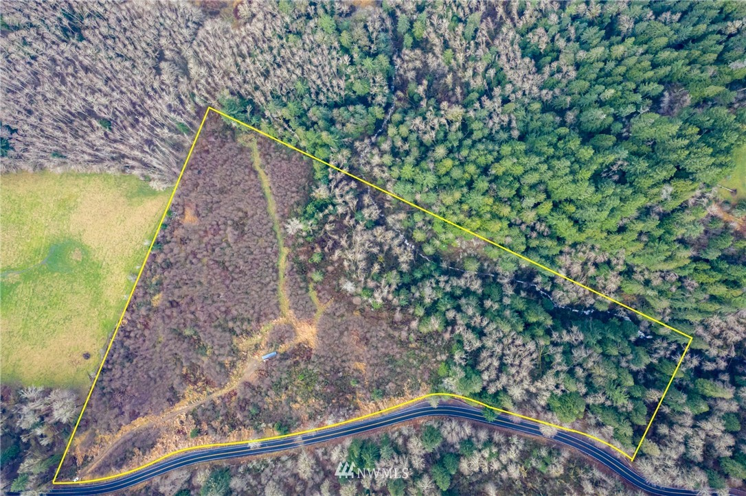Ideal opportunity to build your dream home in a recreational playground with fishing, boating, and hiking at your fingertips! This beautiful lot is located in the quiet, charming town of Mossyrock just 2 miles from Riffe Lake (known for its abundant fishing and incredibly clean and clear water)! If that doesn't strike your fancy, Mayfield Lake is less than 10 minutes away and Mt. Rainier 60 miles! Also, the rapidly-growing town of Packwood and White Pass Ski Resort is 1 hour away. The property features 20 acres with lake views and a private, flat building site. It's a great place for a cabin, vacation spot, or full-time residence!