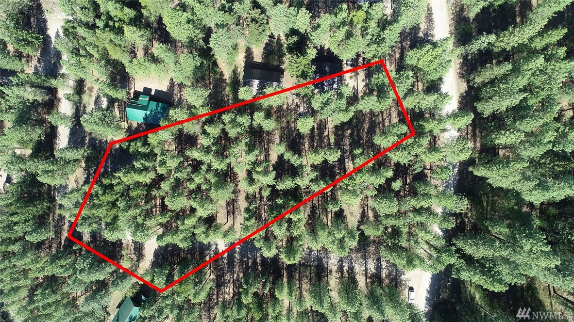 Most affordable building site in the upper Methow Valley. Located close to year round Methow Trails and national forest trail systems. This .38 acre lot is completely usable, gently sloping, with an ideal south facing home site. Treed for privacy or thin for increased sun exposure. Power in road, community water. Short walking distance to community Edelweiss pool. Spend your building dollars on your home, not the land. Terrific investor or builder opportunity.